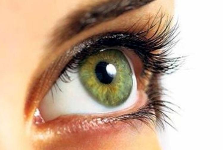 In arrivo Prima, un microchip retinico di ultima generazione per sconfiggere la cecità