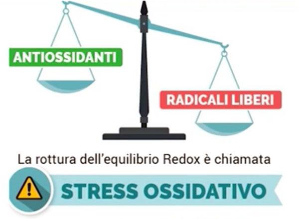Lo stress ossidativo. Un fattore emergente di rischio per la salute