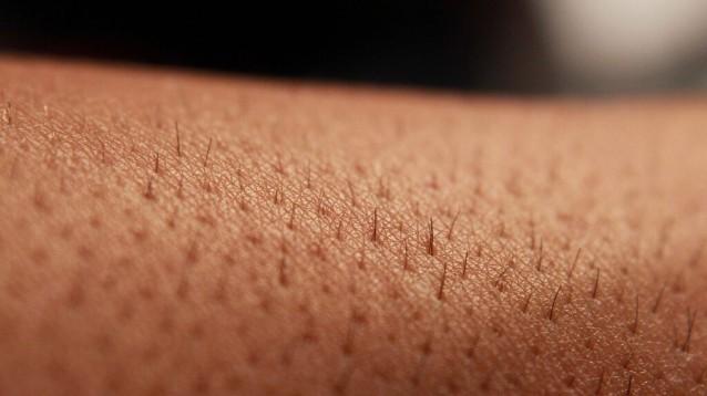 Cellule staminali, uno studio su 'Nature' dimostra come è possibile creare la pelle umana in laboratorio