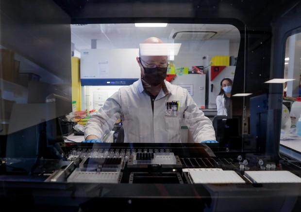 Create reti neurali viventi per la cura dei tumori